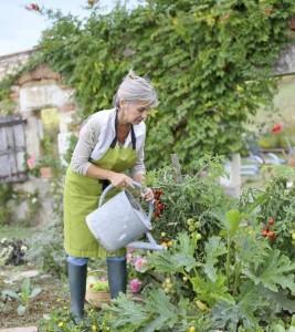Blütenpracht und reiche Ernte